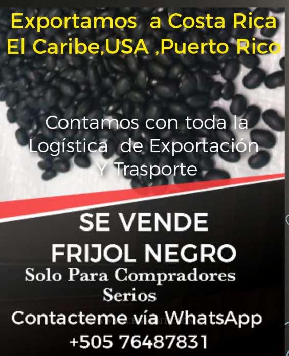 Frijol negro para exportacion